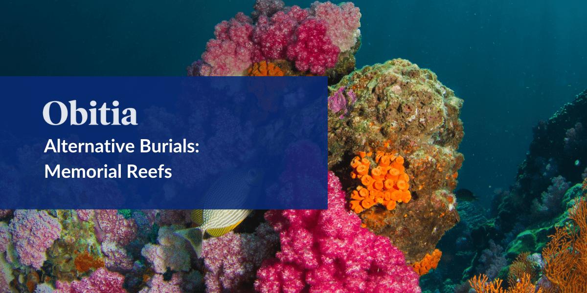 https://obitia.com/wp-content/uploads/2019/10/Alternative-Burials-Memorial-Reefs-Blog-Hero-Images.png