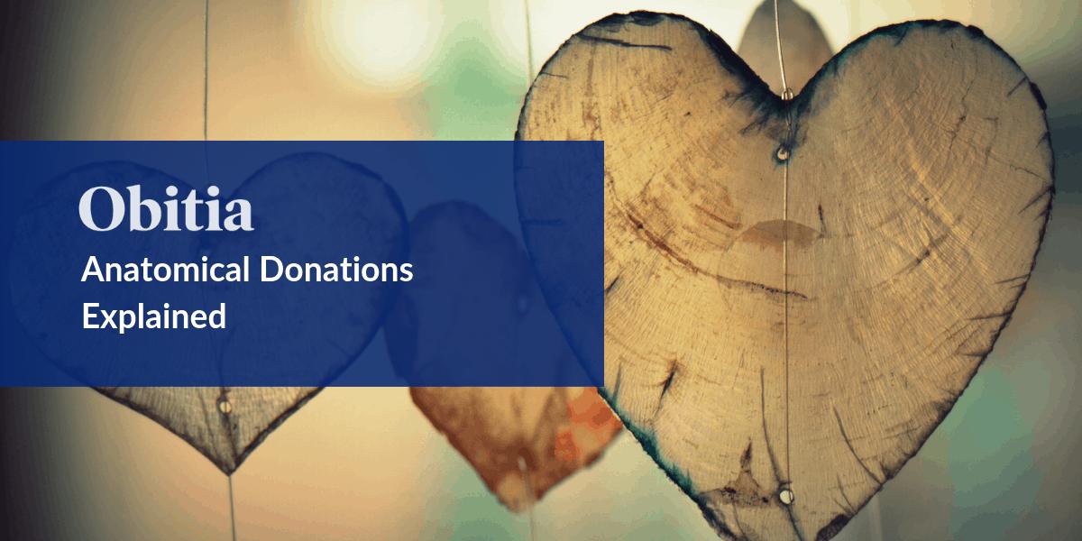 https://obitia.com/wp-content/uploads/2019/10/Anatomical-Donations-Explained-Blog-Hero-Image.png