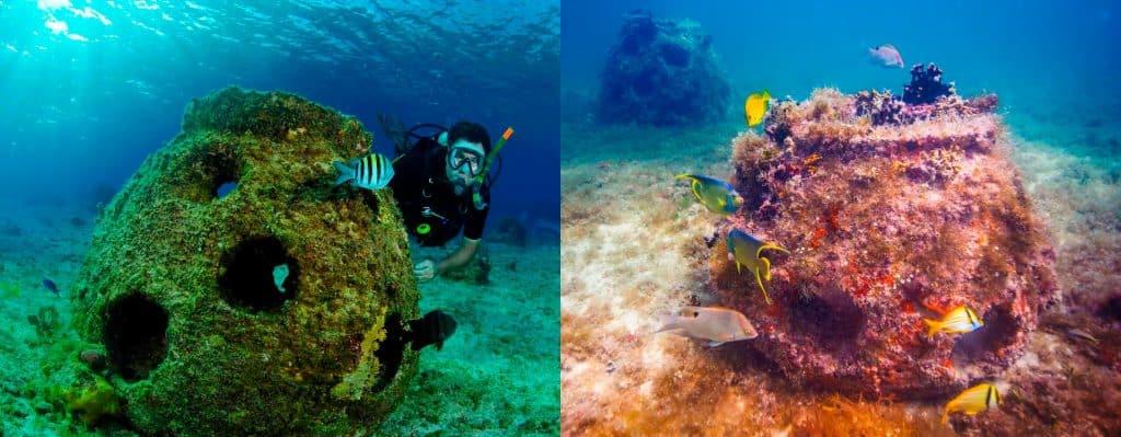 Blog Picture - Memorial Reef Balls