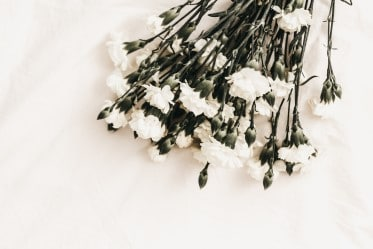Accent Picture - White Flowers